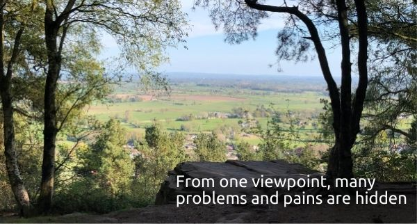 Burwardsley Woods in Cheshire viewpoint