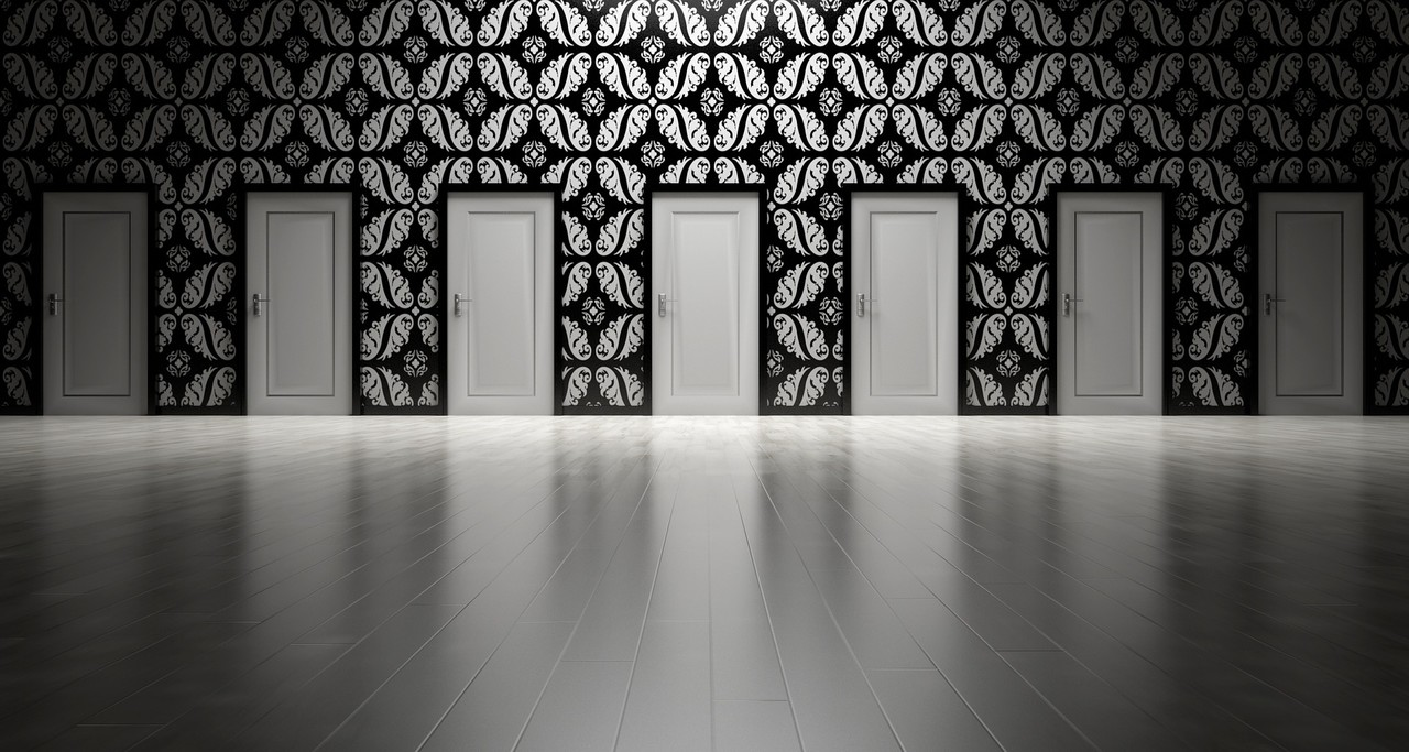 A wall filled with doors to choose from